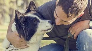 Animales Animales ¿Qué cuidados necesita una mascota?
