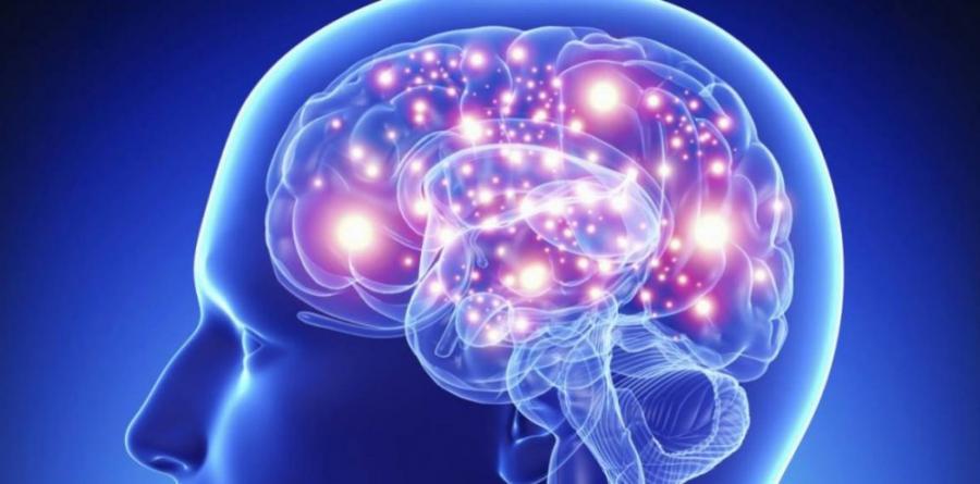 Salud Salud ¿La adicción es una enfermedad cerebral?