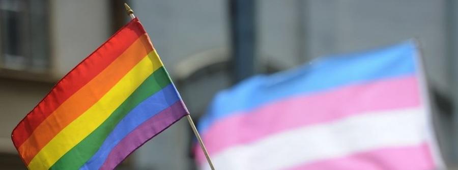Actualidad Actualidad Unidos Podemos retirará el artículo de la ley LGTBI que permitía destruir textos ofensivos sin orden judicial